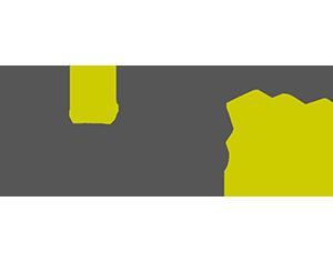 Motus AY logo